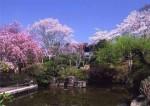 童子山公園